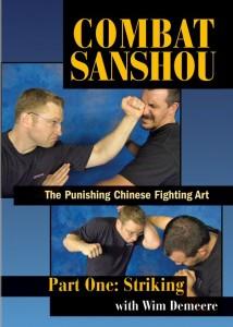 combat-sanshou-part-one-striking